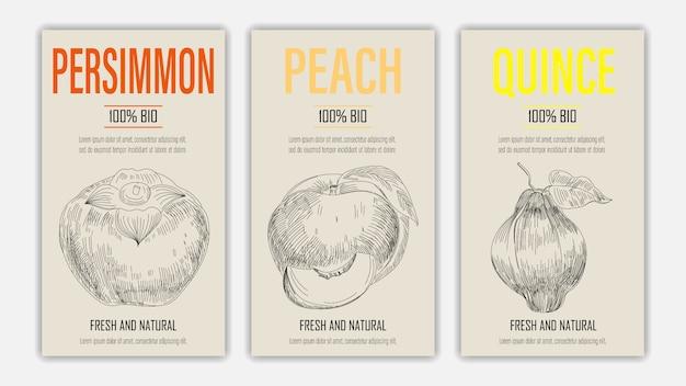 Handgezeichnete früchte von kaki-, pfirsich- und quittenplakaten. weinleseartiges gesundes nahrungsmittelkonzept.