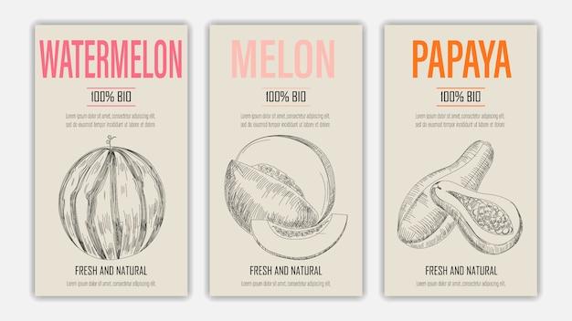 Handgezeichnete früchte von wassermelone, melone und papayapostern. weinleseartiges gesundes nahrungsmittelkonzept.
