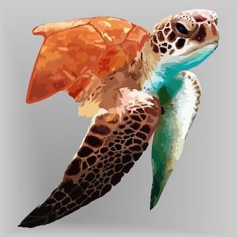 Handgezeichnete illustrationen und vektoren zum schildkrötenporträt