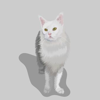 Handgezeichnete illustrationen und vektoren zum weißen katzenporträt