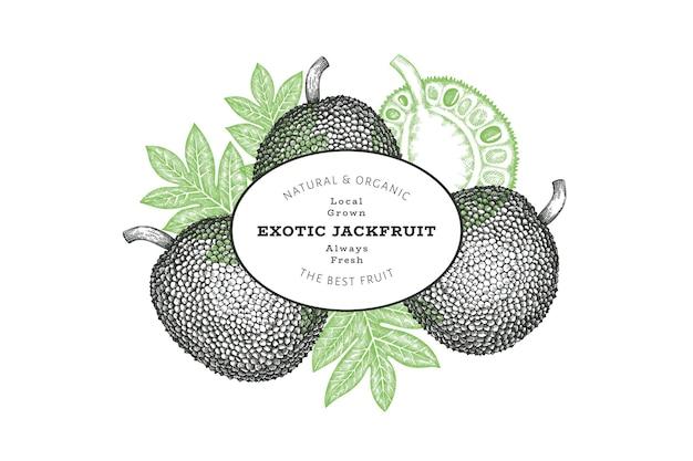 Handgezeichnete jackfrucht-banner im skizzenstil