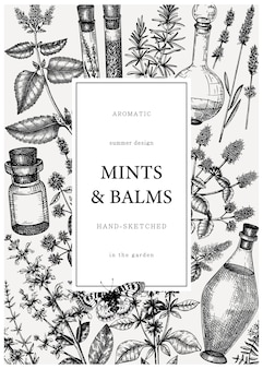 Handgezeichnete karte für parfümerie- und kosmetikzutaten. dekorative vintage pfefferminzbonbons und balsamkräuter.