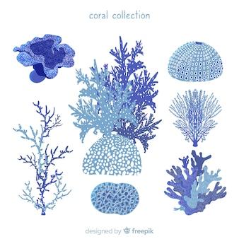 Handgezeichnete korallensammlung
