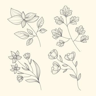 Handgezeichnete kräuter und blumen