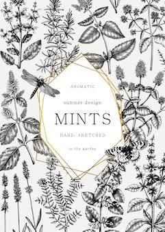 Handgezeichnete münz- und balsamkarte. pfefferminzpflanzen und insekten im vintage-stil.