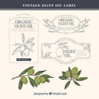 Handgezeichnete olivenöl-etiketten im vintage-stil