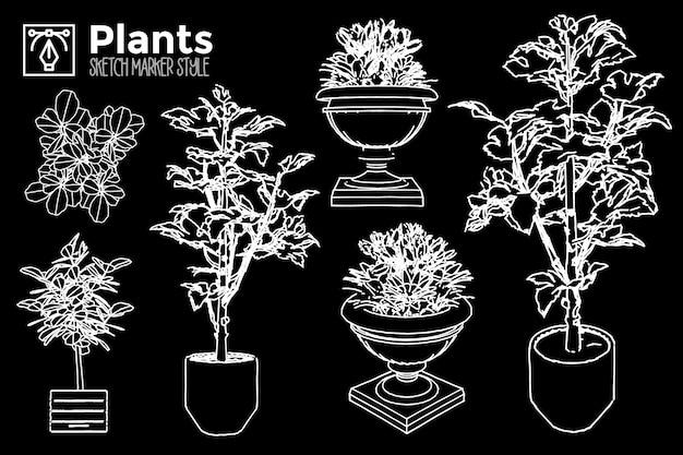 Handgezeichnete pflanzen. satz von isolierten pflanzenansichten.
