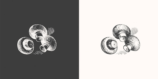 Handgezeichnete pilze