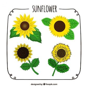 Handgezeichnete rudel von vier sonnenblumen mit verschiedenen designs