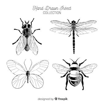 Handgezeichnete sammlung farbloser käfer