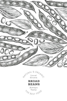 Handgezeichnete saubohnen-design-vorlage. organische frische lebensmittelvektorillustration. retro-schoten-abbildung. gravierter getreidehintergrund im botanischen stil.