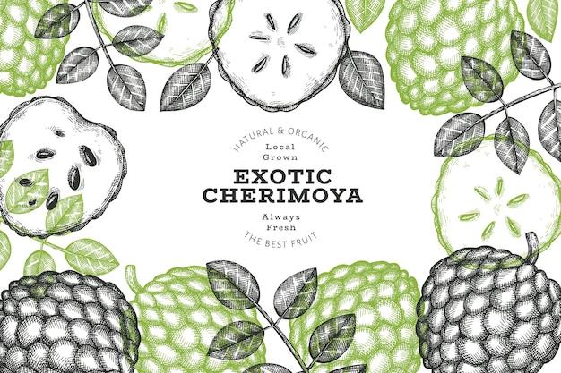 Handgezeichnete skizze stil cherimoya banner. organische frische fruchtvektorillustration. botanische designvorlage im gravierten stil.