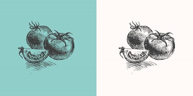 Handgezeichnete tomaten