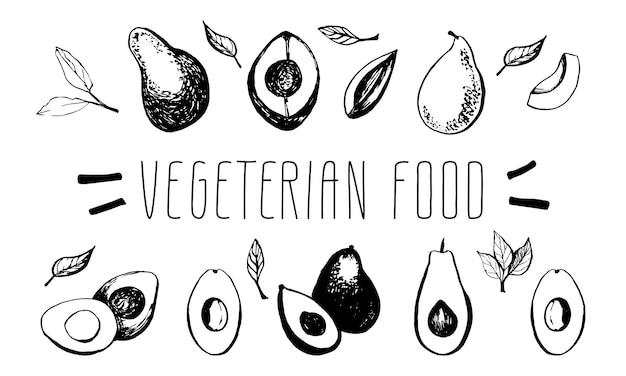 Handgezeichnete vektor-avocado-set tropische illustration essen vegetarisches ökologisches produkt
