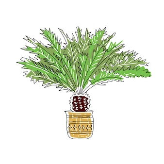 Handgezeichnete vektor-illustration von palmen isoliert auf weißem hintergrund skizzenlinie trendstil