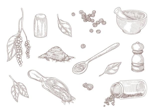 Handgezeichnete vintage-skizze von verschiedenen arten von schwarzem pfeffer. gemahlener schwarzer pfeffer, würziges pulver, pfefferkörner, mühle isoliert auf weißer gravierter illustration