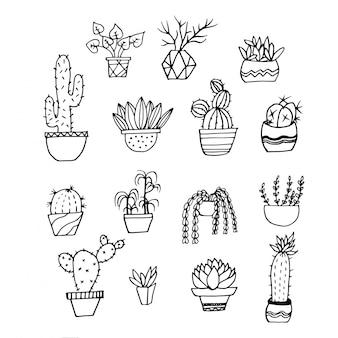 Handgezeichneten kaktus, sukkulenten sammlung