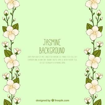 Handgezeichneter jasmin bckground mit modernem stil