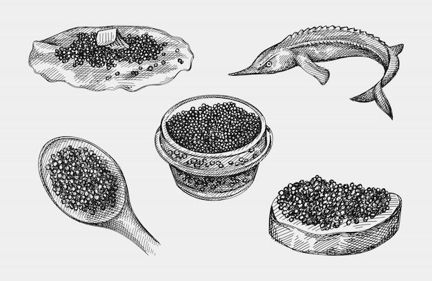 Handgezeichneter kaviarsatz. kaviar auf einem löffel, kaviar in einem glas, kaviar auf einer brotscheibe, kaviar auf einem pfannkuchen, ossetra-fisch. schwarzer kaviar. meeresfrüchte. kaviar für einen snack. kaviar canape