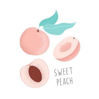 Handgezeichneter süßer pfirsich. isolierte illustrationsfrucht.