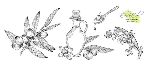 Handgezeichnetes illustrationsbündel des olivenöls