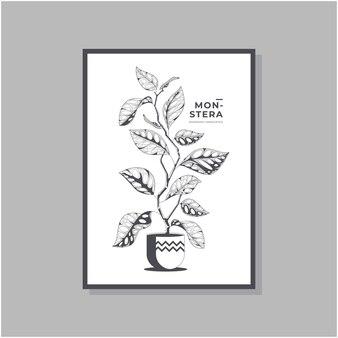 Handgezeichnetes monstera adansonii poster design