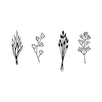 Handgezeichnetes vektorelement. bündel getrocknete kräuter. umrissillustration für magie, aromazeremonie, kräutermedizin.