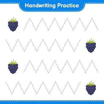 Handschriftpraxis. linien von brombeeren verfolgen. pädagogisches kinderspiel, druckbares arbeitsblatt