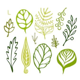 Handsketched lässt gekritzel eingestellt. grüne schattenbilder auf weißem hintergrund. vektor