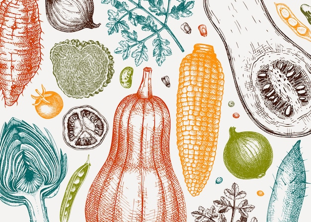 Handskizzierter gemüsevektorhintergrund. banner-vorlage für gesunde lebensmittelzutaten. vintage-gemüse, kräuter, pilzillustrationen für menü, webbanner, rezepte, branding. vektor-illustration.