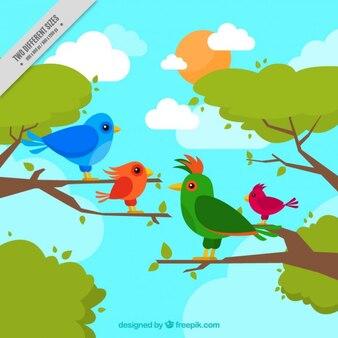Handzeichnung tropische vögel hintergrund