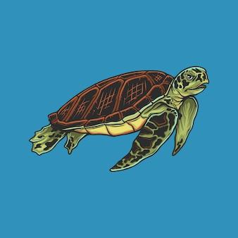 Handzeichnung vintage schildkröte illustration