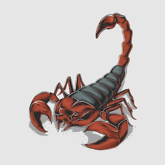 Handzeichnung vintage skorpion illustration