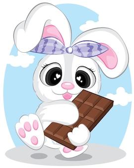 Hase mit dunkler schokolade.