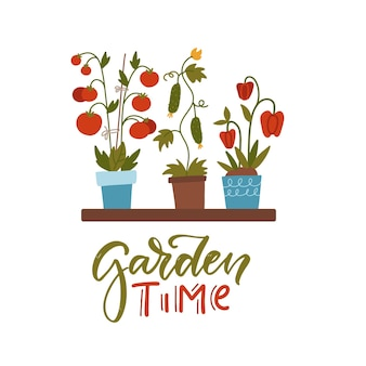 Hausgartenkonzept sämlinge verschiedener gemüsepflanzen in blumentöpfen im regal und schriftzug