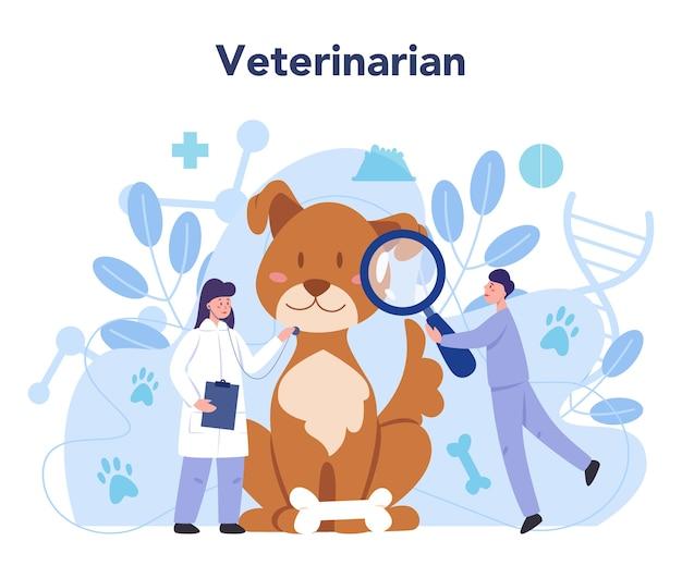 Haustier tierarzt konzept