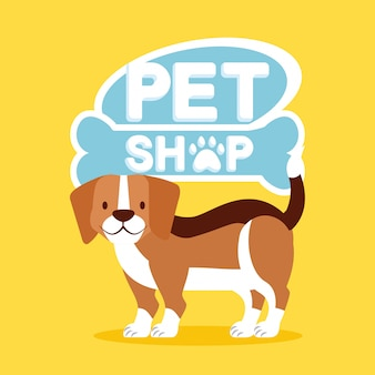 Haustier und tierarzt