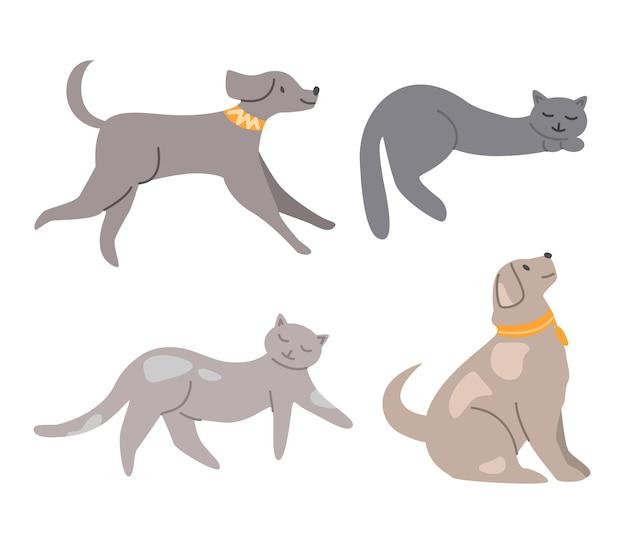 Haustiere - hunde und katzen isoliert