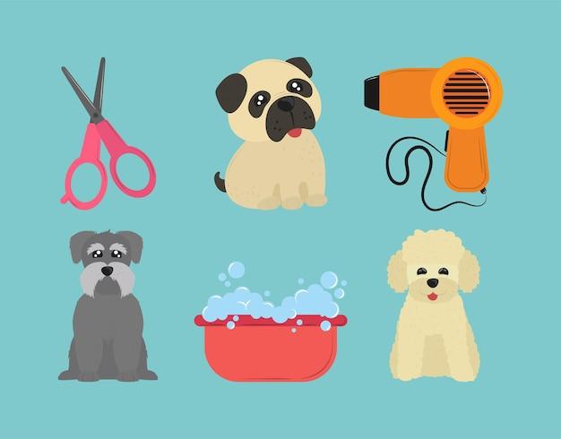 Haustiere waschen icon-set