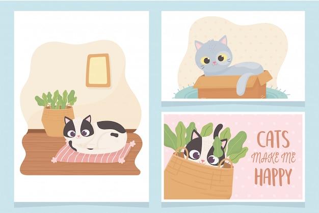 Haustierkatzen machen mich glücklich mit kastenkissen- und korbkarikaturkartenillustration