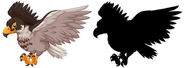 Hawk und seine silhouette
