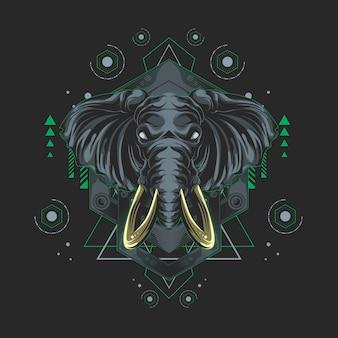 Heilige geometrie des elefanten