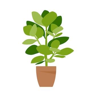 Heimpflanze. topfpflanze getrennt auf weiß. eben. vektor-illustration.