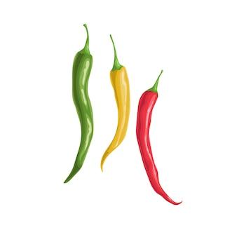 Heiße chilischoten unterschiedlicher farbe. flacher cartoon-designstil.
