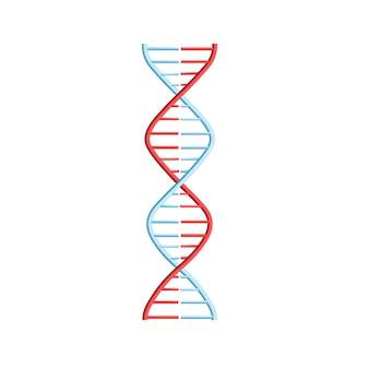 Helixspirale mit genetischem code