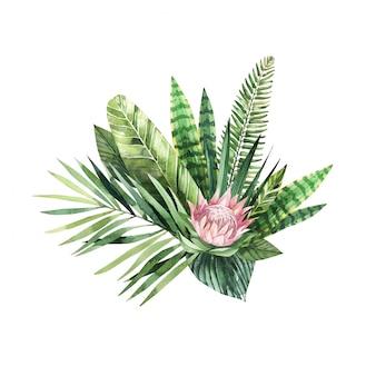 Helle tropische aquarellblume und blätter