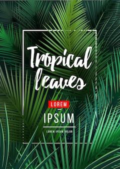 Heller tropischer hintergrund mit dschungelpflanzen. exotische palmblätter.