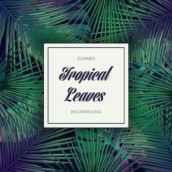 Heller tropischer hintergrund mit dschungelpflanzen. exotisches muster des vektors mit palmblättern.
