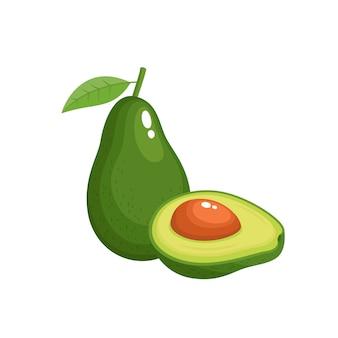 Heller vektorsatz der bunten frischen avocado lokalisierte, organische frucht