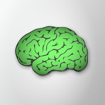 Hellgrünes menschliches gehirn mit schatten auf grauem hintergrund. seitenansicht des gesunden menschlichen gehirns. monat des bewusstseins für psychische gesundheit. symbol für intelligenz und weisheit. vektor-illustration. eps10.